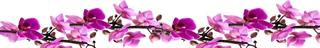 Tezgah arası cam çiçek modelleri